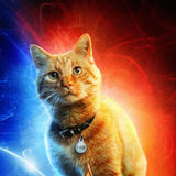 captain-marvel-goose-poster