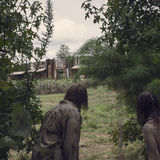 TWD_910_GP_0904_0405_RT