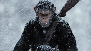 war-for-planet-apes-poster-caesar.jpg