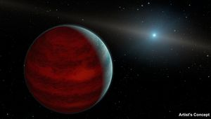 A brown dwarf orbits a white dwarf in this artist's rendition.