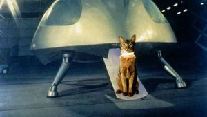 The-Cat-From-Outer-Space-01-DI-1.jpg