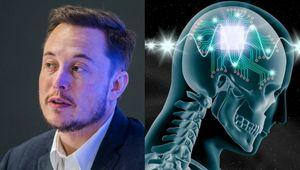 elon-musk-neuralink-brain-computer.jpg