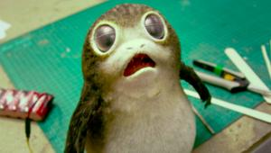 porg pic.png