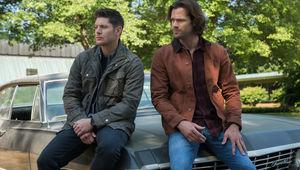 supernatural-1301a_0112r2.jpg