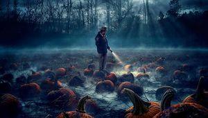 stranger-things-pumpkin-patch-season2-poster.jpg