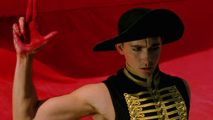 lee_pace_the_fall.jpg