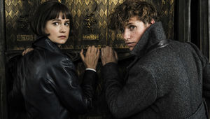Fantastic-Beasts-2-Newt-and-Tina