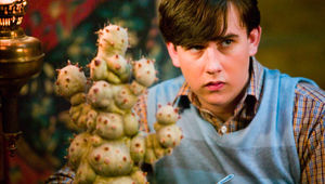 Neville Longbottom, Harry Potter