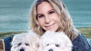Barbra Streisand and Clones