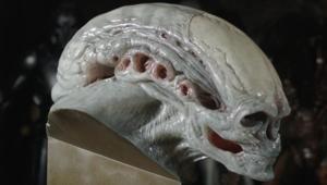Studio ADI Alien Newborn bust from Alien: Resurrection