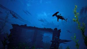 Maneater - Shark