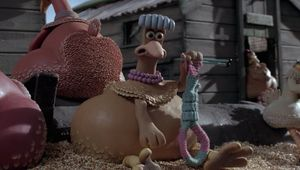 chicken run noose