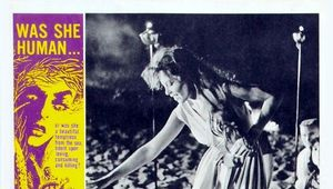 Night Tide Lobby Card