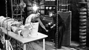 Frankenstein 1931 hero