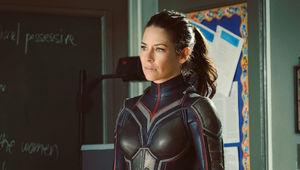 Wasp Evangeline Lilly