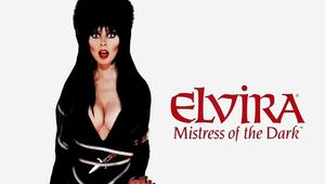 elvira-mistress-of-the-dark-original