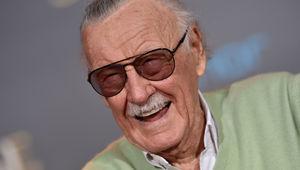 Stan Lee hero