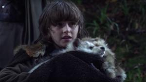 Bran Stark Dire-Wolf Game of Thrones