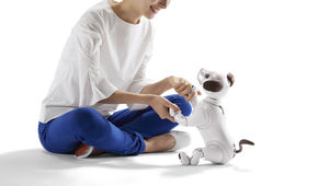 Sony aibo robot dog