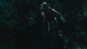 Ant Man Wasp via official Marvel website 2019