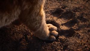 The Lion King remake Simba Paw via Disney YouTube 2019