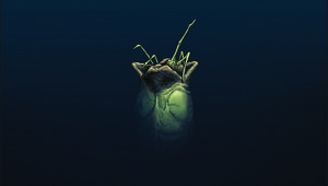 Gibson's Alien 3 Cover 3