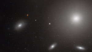 NGC 6874, a huge elliptical galaxy, surrounded by Coma Cluster galaxies, and tens of thousands of globular clusters. Credit: ESA/Hubble & NASA