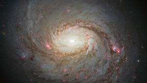 Hubble image of the magnificent spiral galaxy M 77. Credit: NASA, ESA & A. van der Hoeven