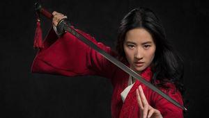 Mulan Yifei Liu