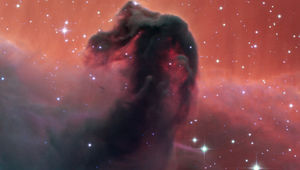 The Horsehead Nebula is named for obvious reasons; a thick clot of dust seen against glowing hydrogen gas. Credit: SPECULOOS Team/E. Jehin/ESO