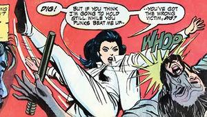 Diana Prince Wonder Woman karate