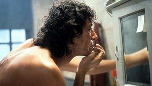 The Fly Jeff Goldblum mirror hero