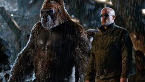 1280_war_for_the_planet_of_the_apes_woody_harrelson.jpg