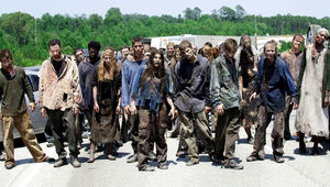 18870-the-walking-dead-the-walking-dead_2.jpg