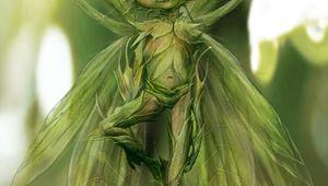 Disney_Maleficent_Concept_Art_03-680x962.jpg