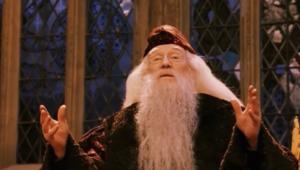 DumbledoreSorcerersStone.png