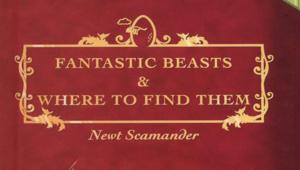Fantastic-Beasts-and-Where-to-Find-Them-harry-potter-26796486-940-1370.png