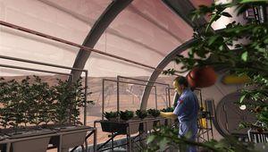 Mars_Greenhouse_0.jpg