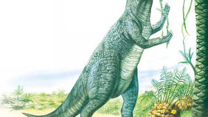 iguanodon-eating-from-tree.jpg