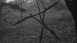 BlairWitchProject.jpg