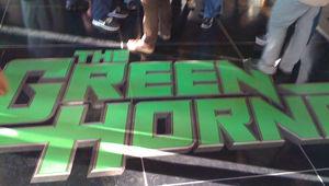 GreenHornetParty1.jpg
