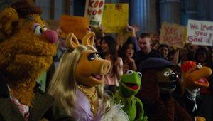 Muppets_2011.jpg
