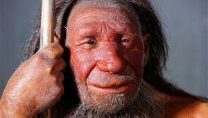 NeanderthalMan.jpeg