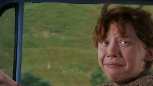 Ron_Weasley_Driving_Potter.JPG