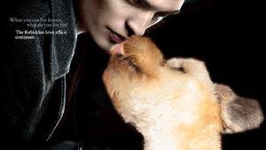 Twilight_Bella_dog.JPEG