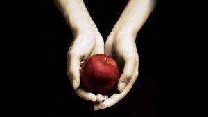 Twilight_cover_2.jpg