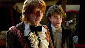 harry-and-ron-potter.jpg