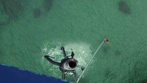 sharktopus_bungee.jpg