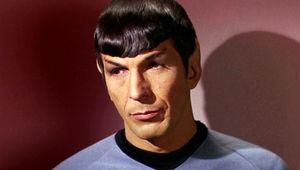 spockface.jpg