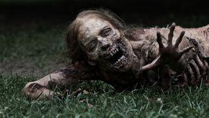 the-walking-dead-.jpg